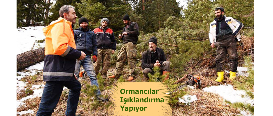 ORMANCILARDA IŞIKLANDIRMA YAPIYOR