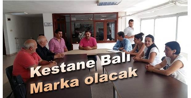 KESTANE BALI COĞRAFİ İŞARET YOLUNDA
