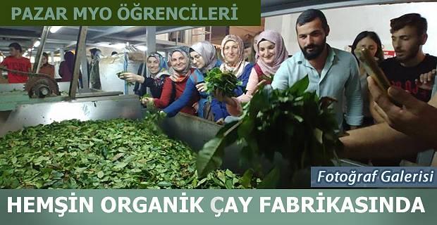 Pazar MYO'den Hemşin' Gezi Düzenlendi