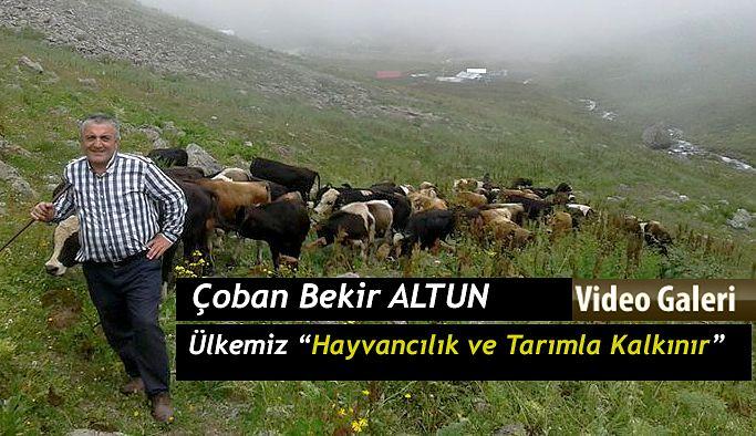 """Bekir Altun """"İki Hayvan Köy Bakkallarından daha iyidir."""