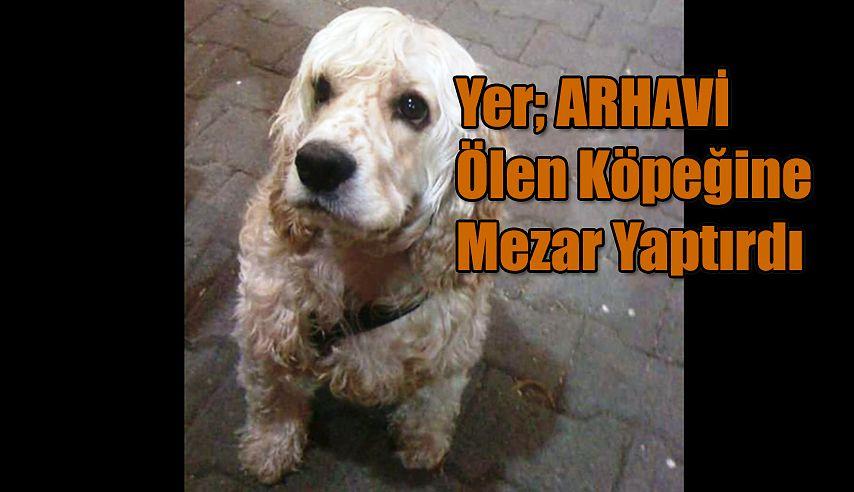 ARHAVİ'Lİ AYDIN ÇAKAR'DAN VEFA  Ölen Köpeklerine Mezar Yaptılar.