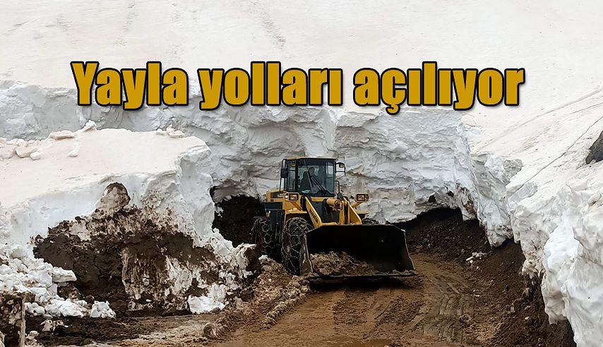 Rize'de Kar Temizliği..