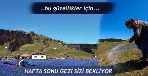 Kadiralak Yaylasına Gezi düzenlendi