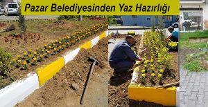 bPazar Belediyesinden Bahar Çalışmaları.../b