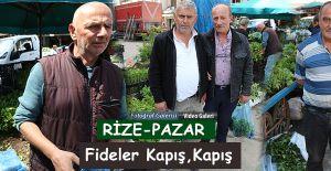 bRize-Pazarda Fide satışına büyük.../b