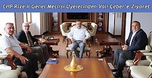 CHP İl Genel Meclisi Üyelerinden, Vali Çeber'e Ziyaret