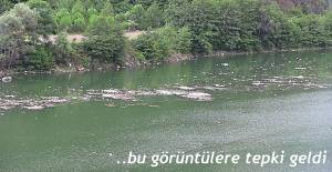 """""""BARAJ GÖLÜNE BIRAKILAN KURBANLIKLARIN ATIKLARINA BORÇKA BELEDİYESİ'NDEN TEPKİ"""""""