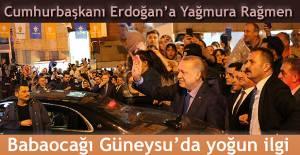 Cumhurbaşkanı Recep Tayyip Erdoğan, Babaocağı Rize'de