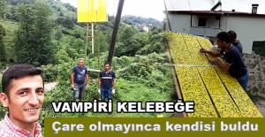 bVAMPİR KELEBEK SORUNUNA TUZAK KURARAK.../b
