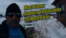 Badara Yaylasında Kar yayla evlerini beyaz örtüyle kapladı
