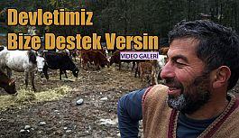"""Hayvancılık Yapan Telatar: """"Devletten Destek bekliyoruz"""""""