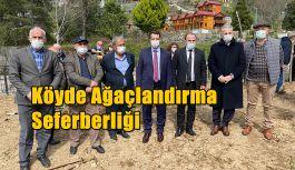Hopa Esenkıyı köyünde fidanlar toprakla buluşturuldu
