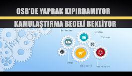 OSB DE YAPRAK KIPIRDAMIYOR