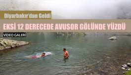 Diyarbakır'dan geldi Avusor 'da yüzdü