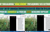 """Çay tarlalarında """"Ağaç dikilsin"""" Paylaşımına Prof. Seyis ve Prof. Karaoğlu'ndan önemli açıklamalar"""