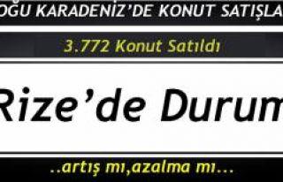 DOĞU KARADENİZ'DE KONUT SATIŞ İSTATİSTİKLERİ...