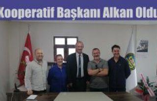 ESNAF SANATKÂRLAR KREDİ VE KEFALET KOOPERATİFİ...