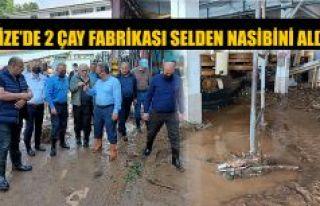 SELDEN ZARAR GÖREN ÇAYKUR'UN İKİ FABRİKASI...