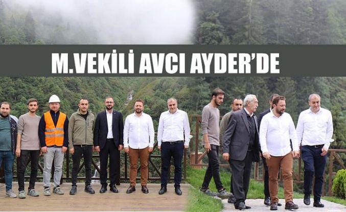 Milletvekili Avcı Ayder'de