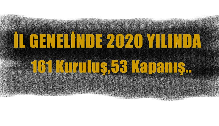 2020' DE 161 KURULUŞ GERÇEKLEŞTİ