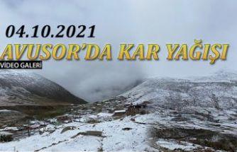 Rize'nin yüksek kesimlerindeki yaylalara kar yağdı.